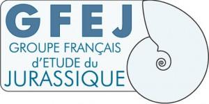 logo GFEJ